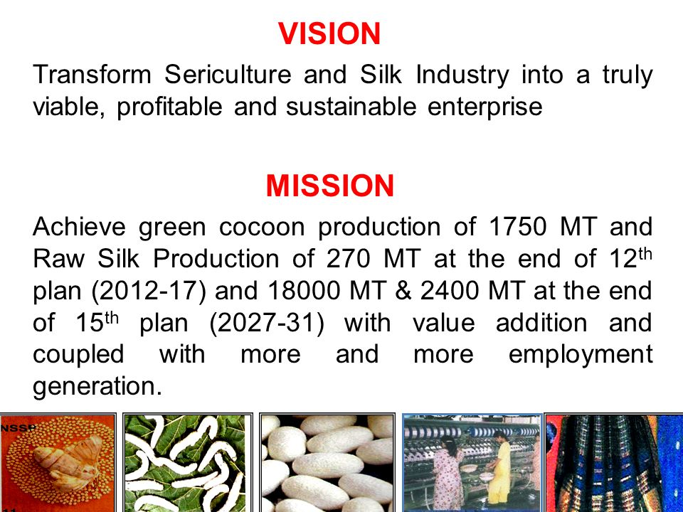 ROAD MAP TO ACHIEVE TARGET OF 1750 MT OF COCOON PRODUCTION AT THE END OF 12 th PLAN &12000 MT AT THE END OF 15 th PLAN This will be achieved by vertical and horizontal expansion of Sericulture in the State.
