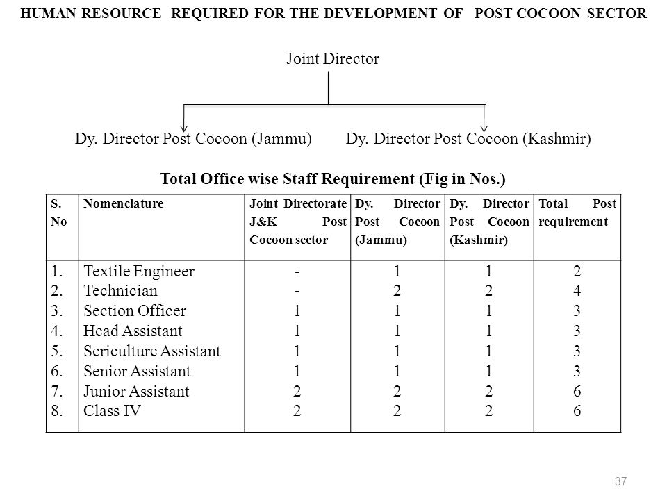 Joint Director Dy. Director Post Cocoon (Jammu) Dy. Director Post Cocoon (Kashmir) Total Office wise Staff Requirement (Fig in Nos.) S. No Nomenclatur