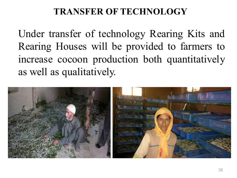 TRANSFER OF TECHNOLOGY 38 Under transfer of technology Rearing Kits and Rearing Houses will be provided to farmers to increase cocoon production both