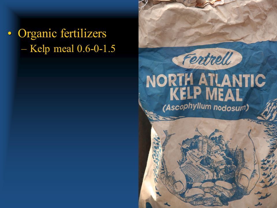 Organic fertilizersOrganic fertilizers –Feather Meal 12-0-0 to 14-0-0 (different suppliers) –Slow release!