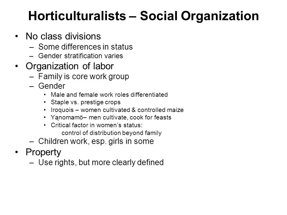 Horticulturalists – Social Organization No class divisions –Some differences in status –Gender stratification varies Organization of labor –Family is core work group –Gender Male and female work roles differentiated Staple vs.