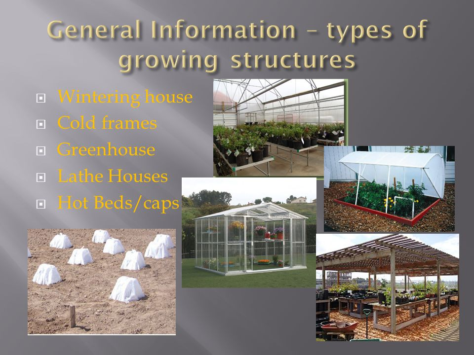  Wintering house  Cold frames  Greenhouse  Lathe Houses  Hot Beds/caps