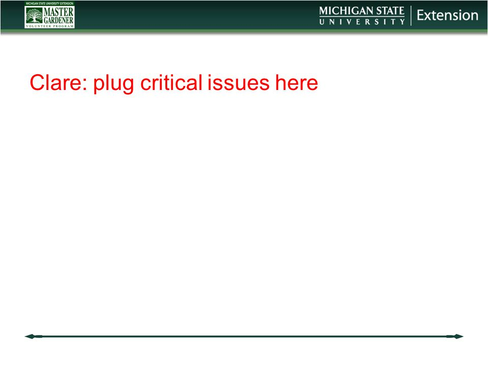 Clare: plug critical issues here