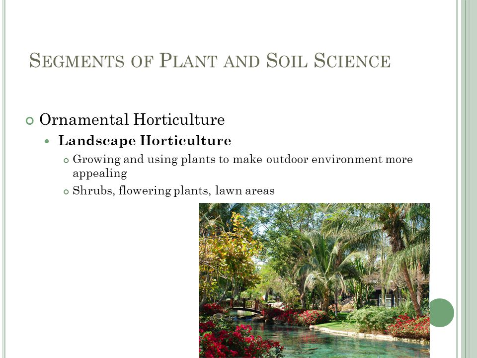 S EGMENTS OF P LANT AND S OIL S CIENCE Ornamental Horticulture Landscape Horticulture Growing and using plants to make outdoor environment more appealing Shrubs, flowering plants, lawn areas