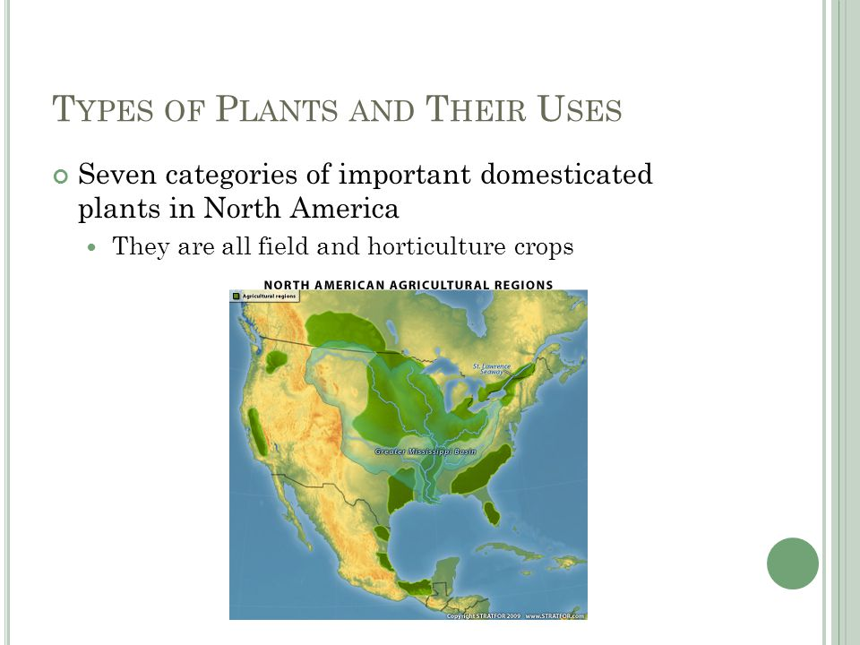 T YPES OF P LANTS AND T HEIR U SES Seven categories of important domesticated plants in North America They are all field and horticulture crops