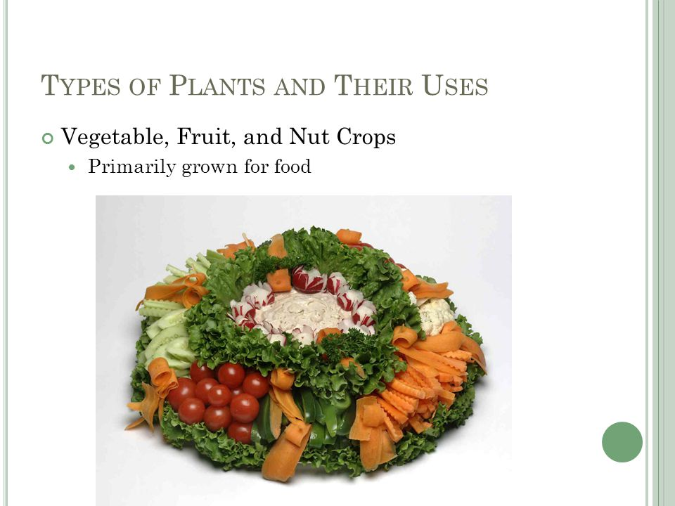 T YPES OF P LANTS AND T HEIR U SES Vegetable, Fruit, and Nut Crops Primarily grown for food
