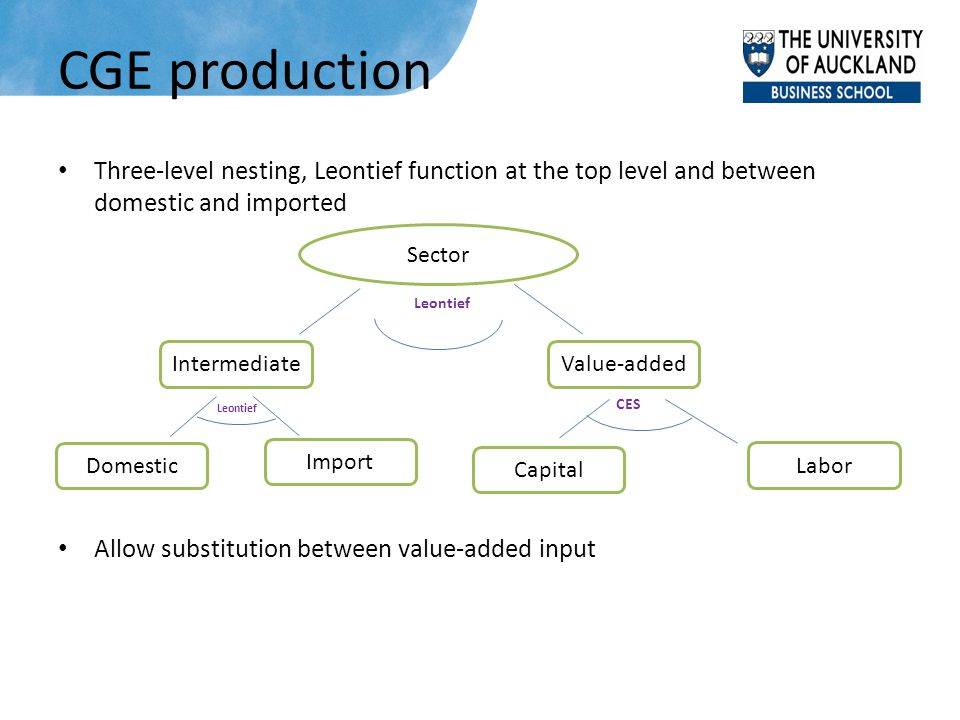 CGE production Three-level nesting, Leontief function at the top level and between domestic and imported Allow substitution between value-added input