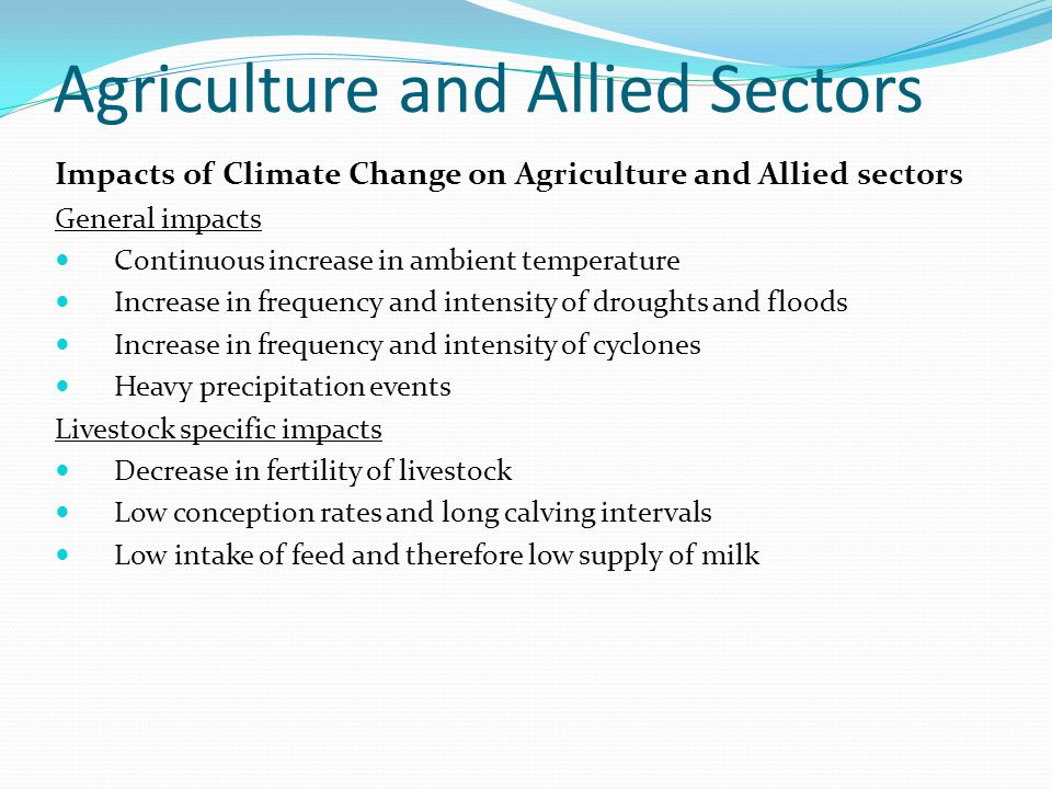 Agriculture and Allied Sectors Impacts of Climate Change on Agriculture and Allied sectors General impacts Continuous increase in ambient temperature Increase in frequency and intensity of droughts and floods Increase in frequency and intensity of cyclones Heavy precipitation events Livestock specific impacts Decrease in fertility of livestock Low conception rates and long calving intervals Low intake of feed and therefore low supply of milk