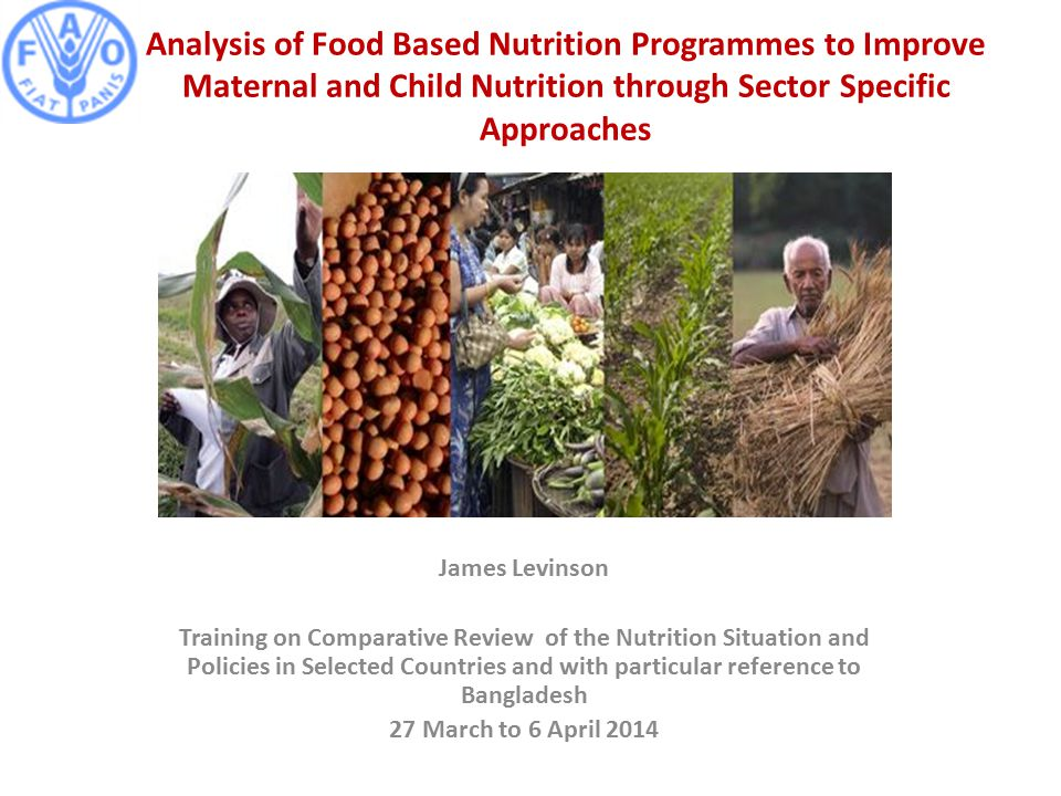 Analysis of Food Based Nutrition Programmes to Improve Maternal and Child Nutrition through Sector Specific Approaches James Levinson Training on Comparative Review of the Nutrition Situation and Policies in Selected Countries and with particular reference to Bangladesh 27 March to 6 April 2014