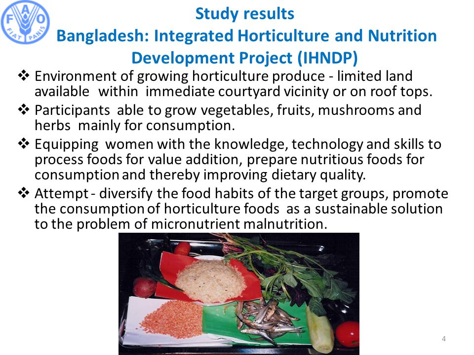 Study results Bangladesh: Integrated Horticulture and Nutrition Development Project (IHNDP)  Environment of growing horticulture produce - limited land available within immediate courtyard vicinity or on roof tops.