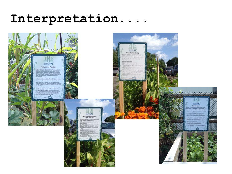 Interpretation....