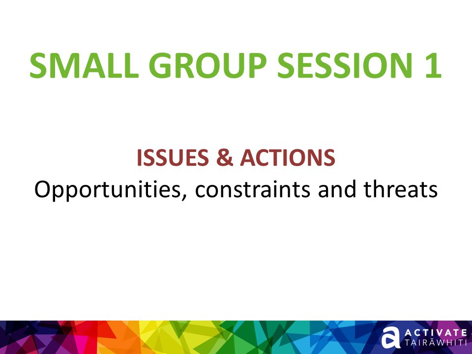 SMALL GROUP SESSION 1 ISSUES & ACTIONS Opportunities, constraints and threats