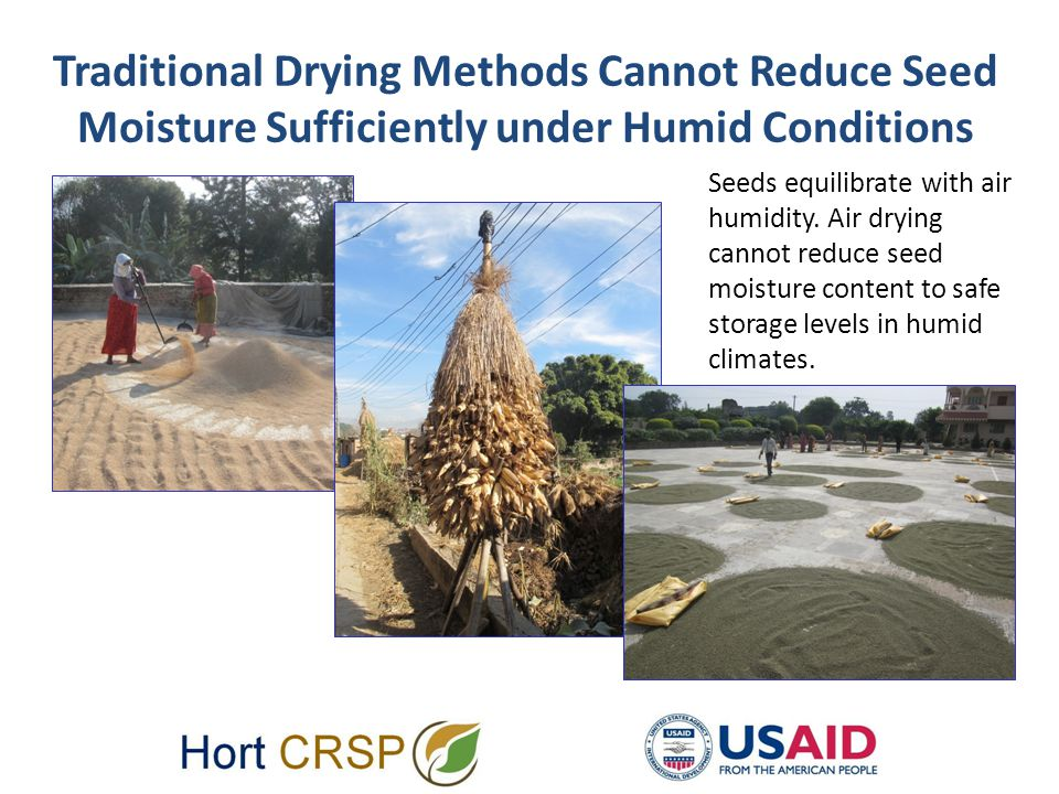 Traditional Drying Methods Cannot Reduce Seed Moisture Sufficiently under Humid Conditions Seeds equilibrate with air humidity. Air drying cannot redu