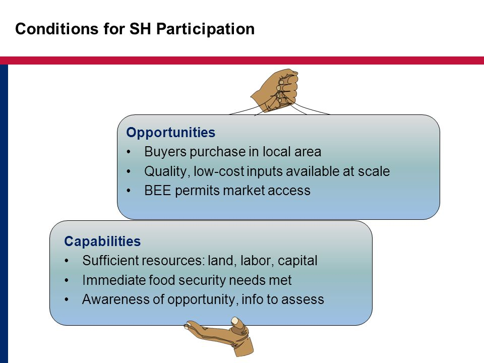 Conditions for SH Participation Opportunities Buyers purchase in local area Quality, low-cost inputs available at scale BEE permits market access Capabilities Sufficient resources: land, labor, capital Immediate food security needs met Awareness of opportunity, info to assess