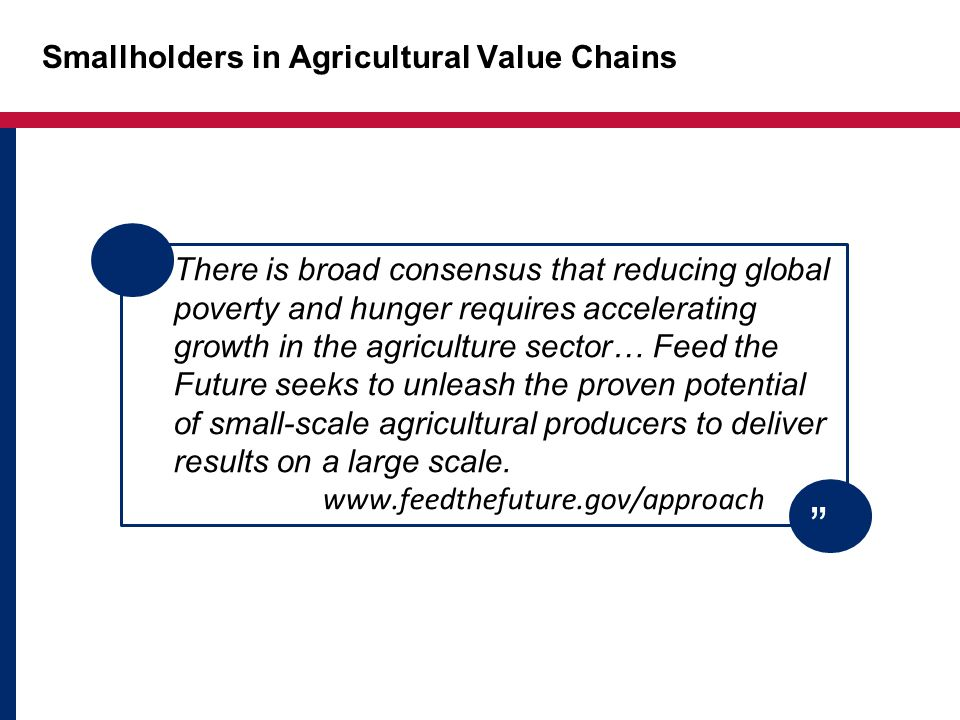 Smallholders in Agricultural Value Chains There is broad consensus that reducing global poverty and hunger requires accelerating growth in the agriculture sector… Feed the Future seeks to unleash the proven potential of small-scale agricultural producers to deliver results on a large scale.