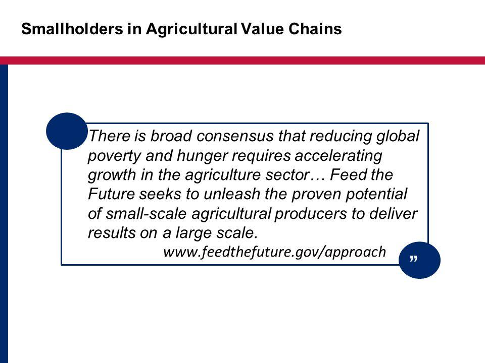 Evidence on Productivity Kenya dairy Zambia ag inputs Nigeria fertilizer Evidence on Productivity