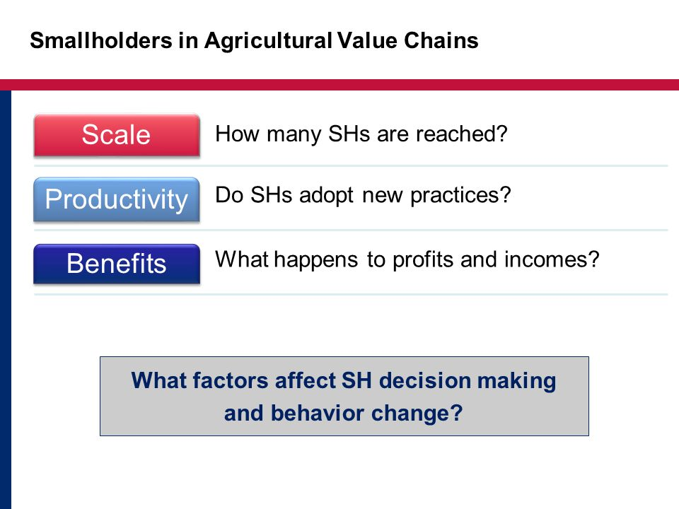 Smallholders in Agricultural Value Chains What factors affect SH decision making and behavior change.