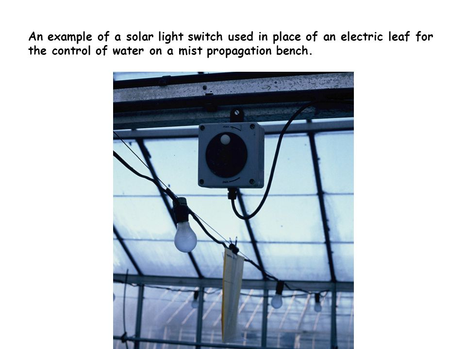 An example of a high-pressure sodium lamp used to provide supplementary and replacement lighting in horticulture.