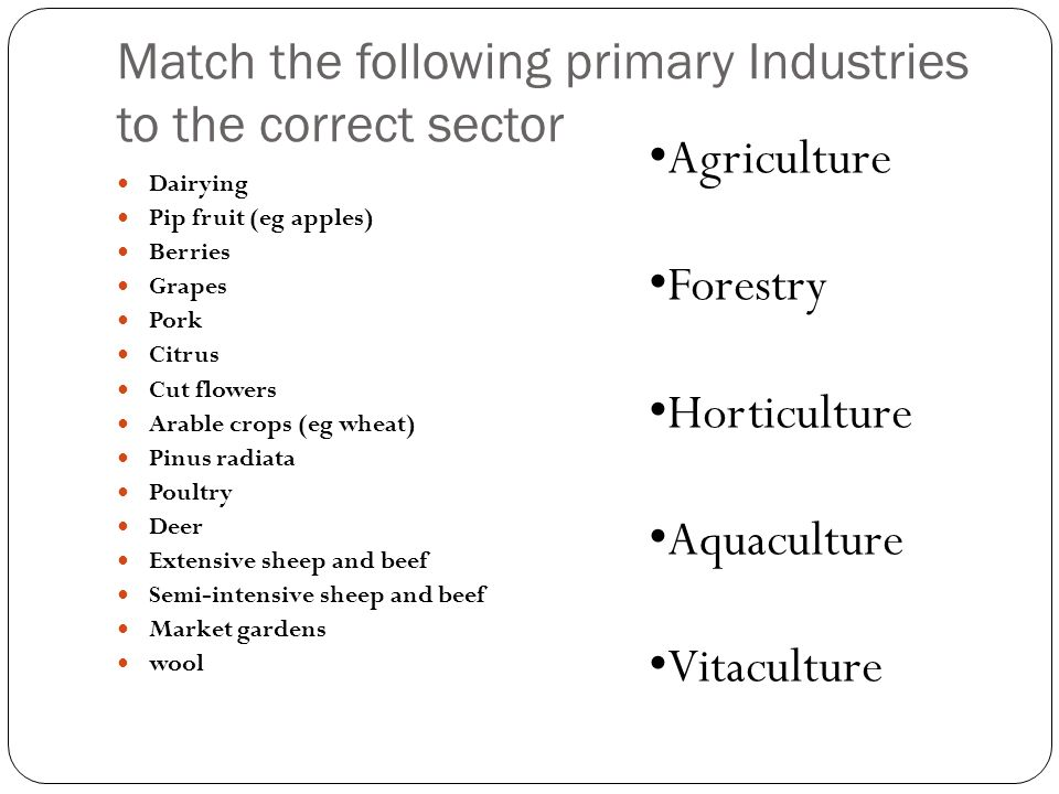 Match the following primary Industries to the correct sector Dairying Pip fruit (eg apples) Berries Grapes Pork Citrus Cut flowers Arable crops (eg wh