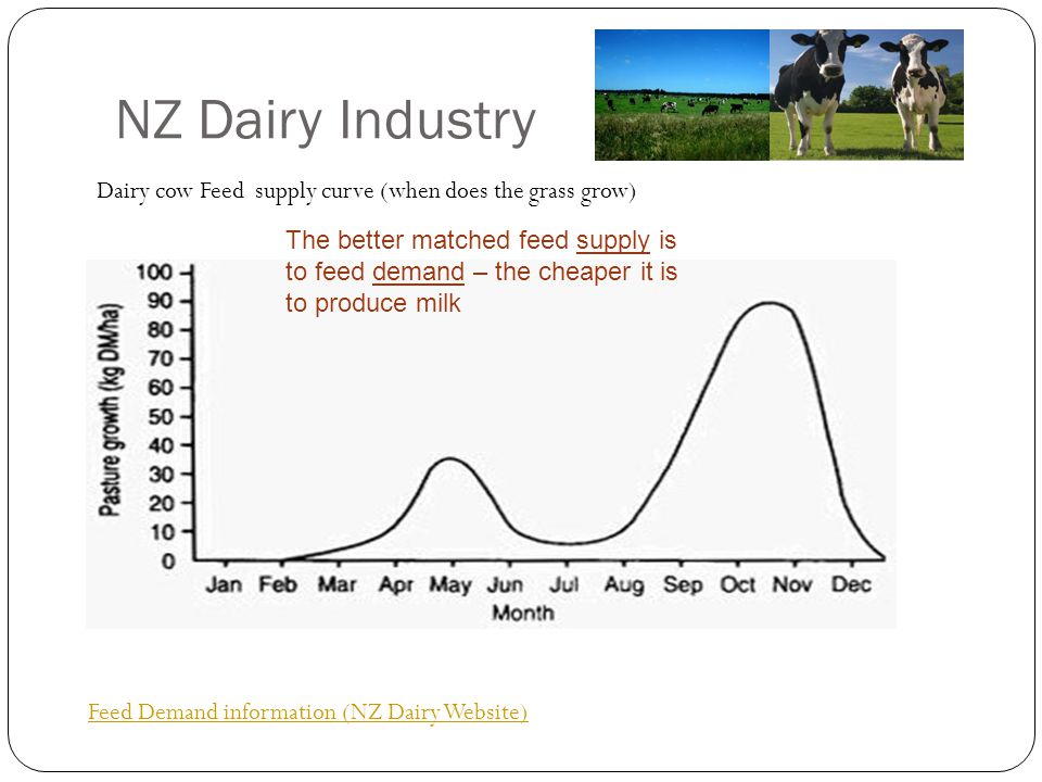NZ Dairy Industry Feed Demand information (NZ Dairy Website) Dairy cow Feed supply curve (when does the grass grow) The better matched feed supply is