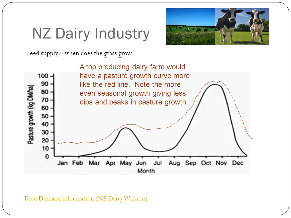 NZ Dairy Industry Feed Demand information (NZ Dairy Website) Feed supply – when does the grass grow A top producing dairy farm would have a pasture gr