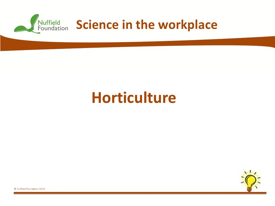 © Nuffield Foundation 2013 Science in the workplace Horticulture
