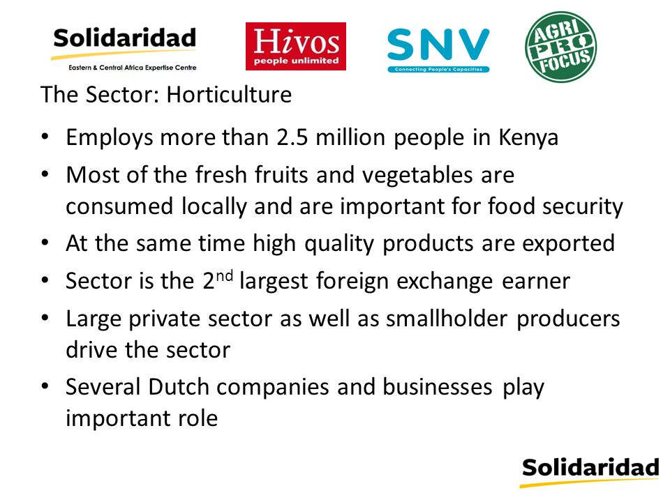 The Sector: Horticulture Employs more than 2.5 million people in Kenya Most of the fresh fruits and vegetables are consumed locally and are important