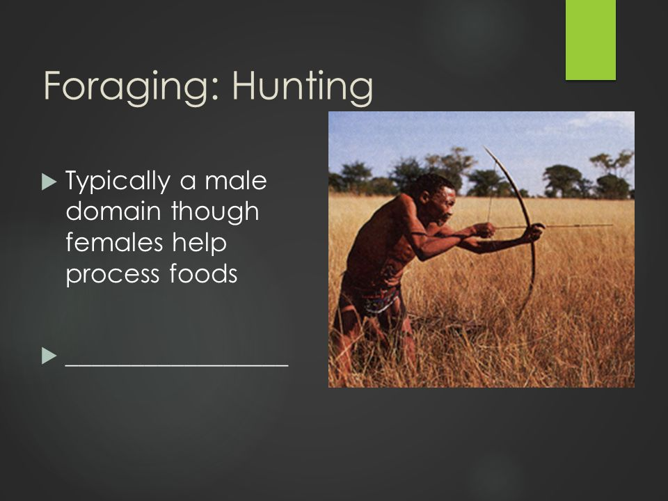 Foraging: Gathering  Typically a female domain  Requires less travel  Allows for infant care  Provides most of the __________________