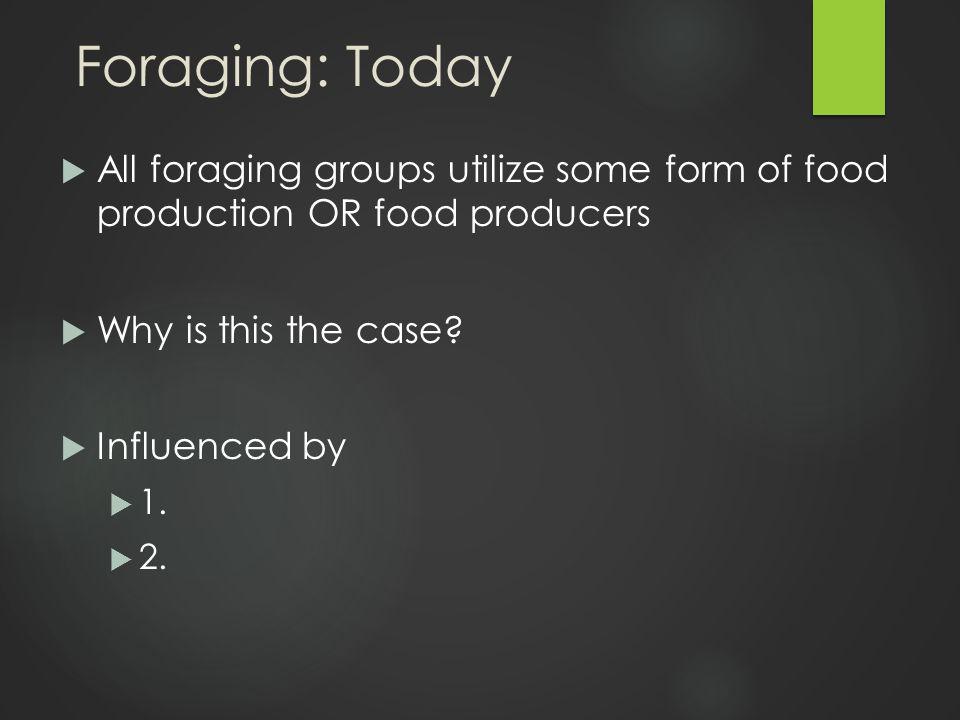 Foraging: Today  All foraging groups utilize some form of food production OR food producers  Why is this the case.