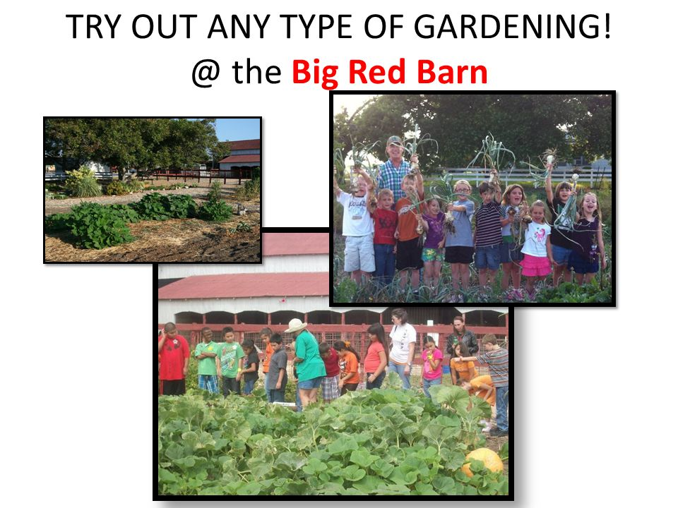 TRY OUT ANY TYPE OF GARDENING! @ the Big Red Barn