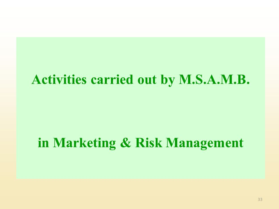 33 Activities carried out by M.S.A.M.B. in Marketing & Risk Management