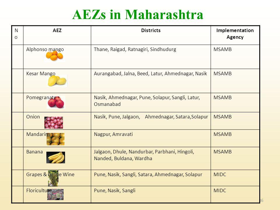 36 AEZs in Maharashtra NoNo AEZDistrictsImplementation Agency Alphonso mangoThane, Raigad, Ratnagiri, SindhudurgMSAMB Kesar MangoAurangabad, Jalna, Beed, Latur, Ahmednagar, NasikMSAMB PomegranateNasik, Ahmednagar, Pune, Solapur, Sangli, Latur, Osmanabad MSAMB OnionNasik, Pune, Jalgaon, Ahmednagar, Satara,SolapurMSAMB MandarinsNagpur, AmravatiMSAMB BananaJalgaon, Dhule, Nandurbar, Parbhani, Hingoli, Nanded, Buldana, Wardha MSAMB Grapes & Grape WinePune, Nasik, Sangli, Satara, Ahmednagar, SolapurMIDC FloriculturePune, Nasik, SangliMIDC
