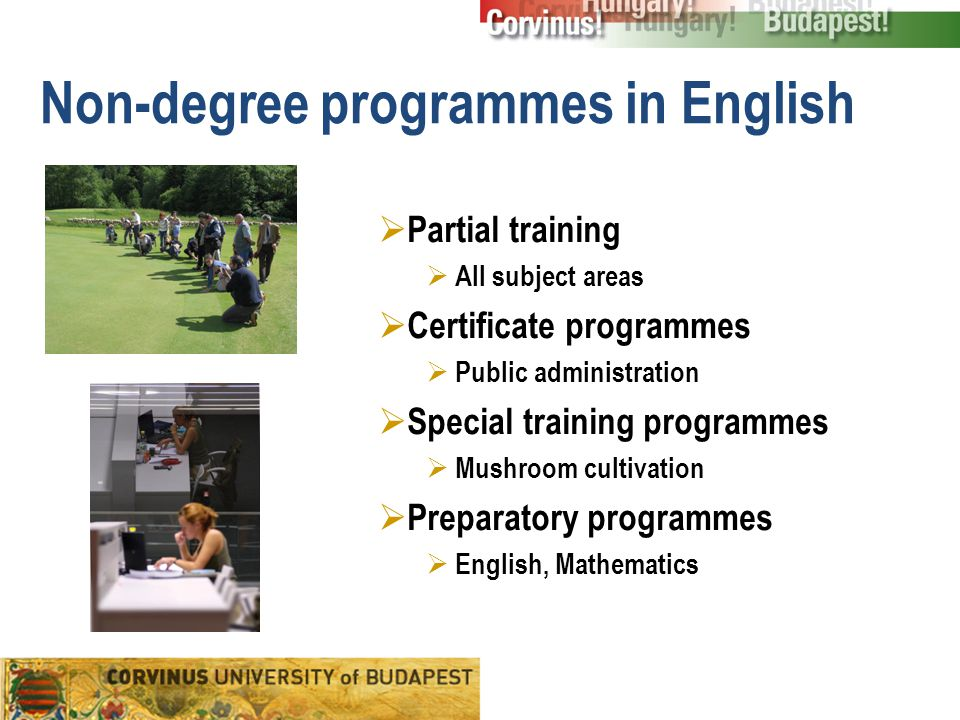 Non-degree programmes in English  Partial training  All subject areas  Certificate programmes  Public administration  Special training programmes  Mushroom cultivation  Preparatory programmes  English, Mathematics