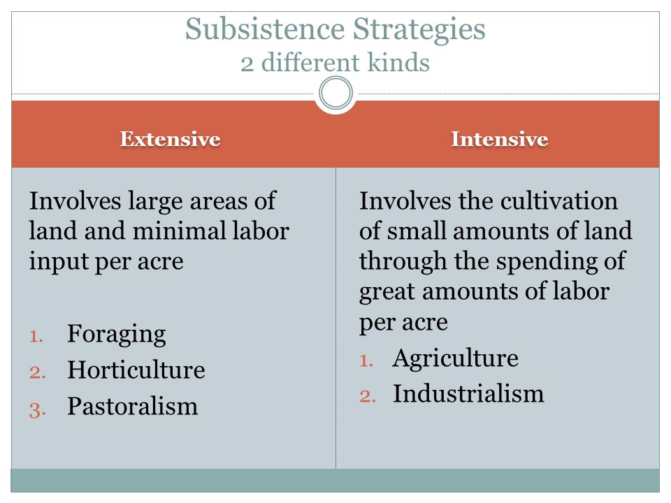 Agriculture Cont.