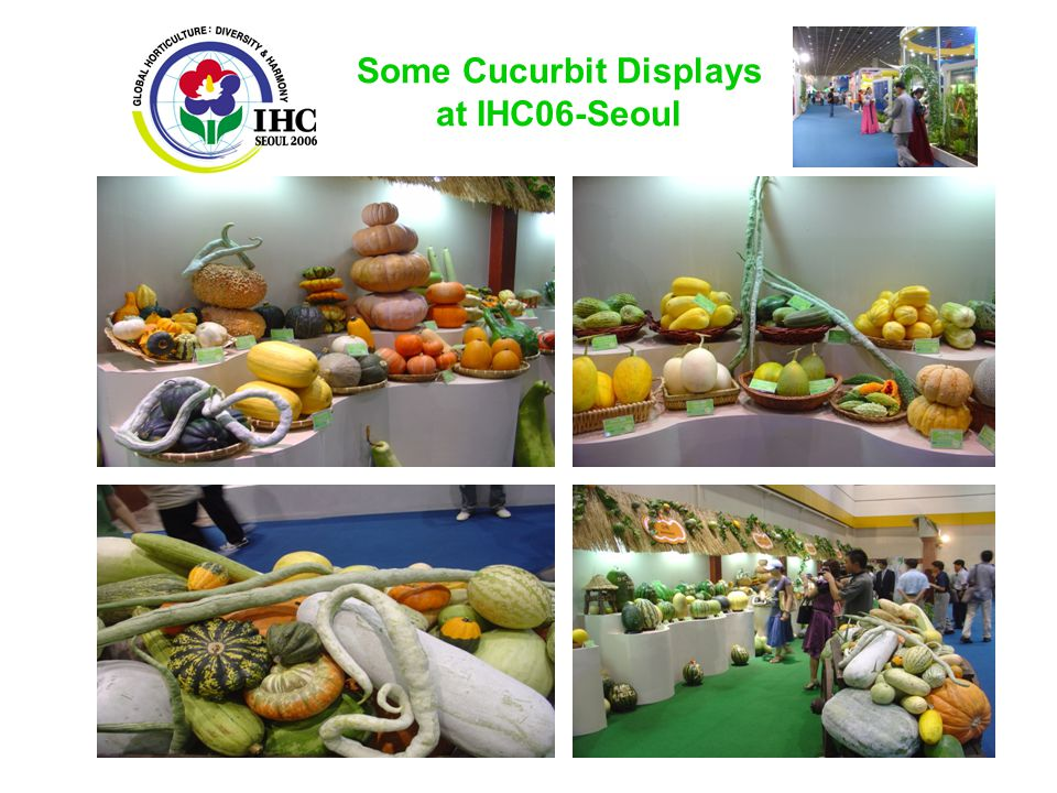 Some Cucurbit Displays at IHC06-Seoul