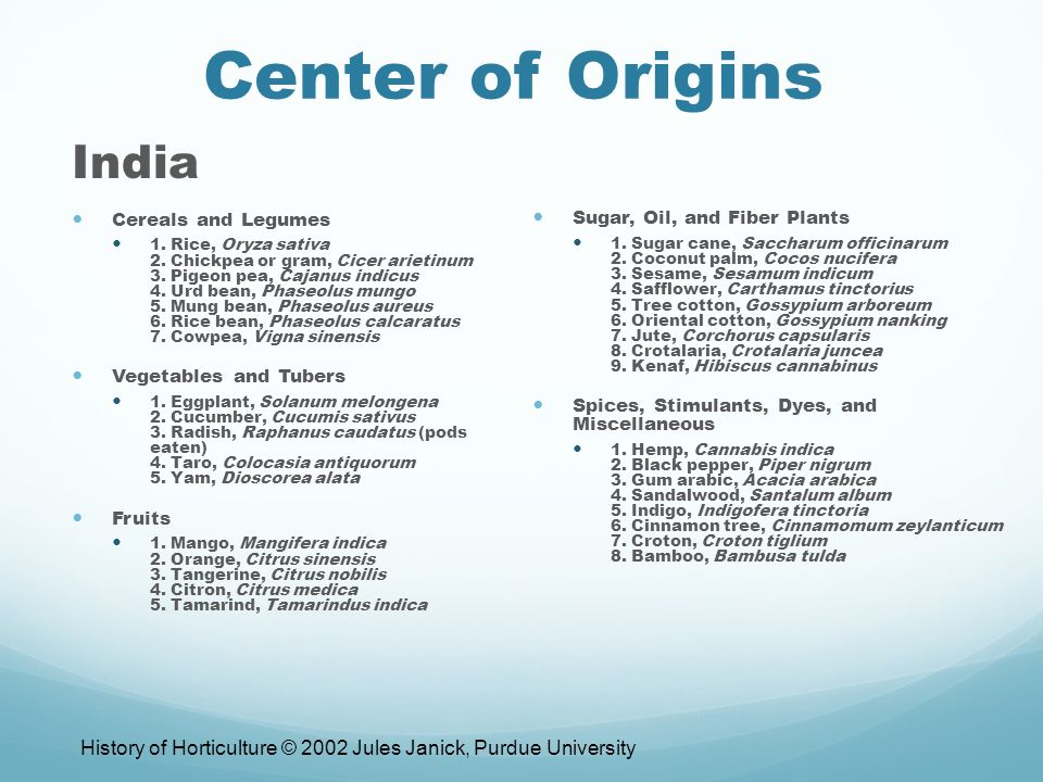 Center of Origins India Cereals and Legumes 1. Rice, Oryza sativa 2.