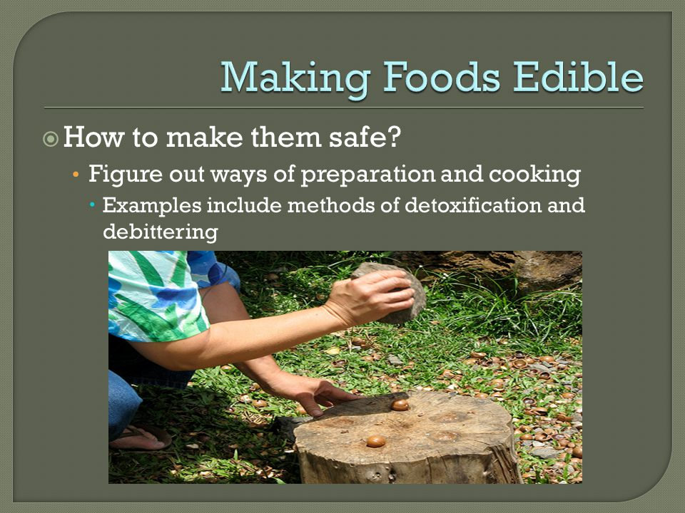  How to make them safe? Figure out ways of preparation and cooking  Examples include methods of detoxification and debittering