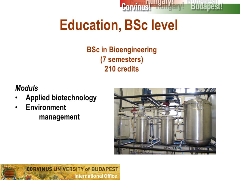 Education, BSc level BSc in Bioengineering (7 semesters) 210 credits Moduls Applied biotechnology Environment management International Office
