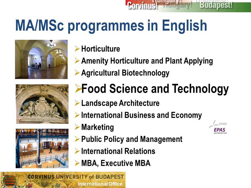 MA/MSc programmes in English  Horticulture  Amenity Horticulture and Plant Applying  Agricultural Biotechnology  Food Science and Technology  Landscape Architecture  International Business and Economy  Marketing  Public Policy and Management  International Relations  MBA, Executive MBA International Office