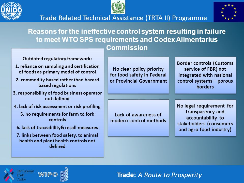 Trade: A Route to Prosperity Trade Related Technical Assistance (TRTA II) Programme Reasons for the ineffective control system resulting in failure to