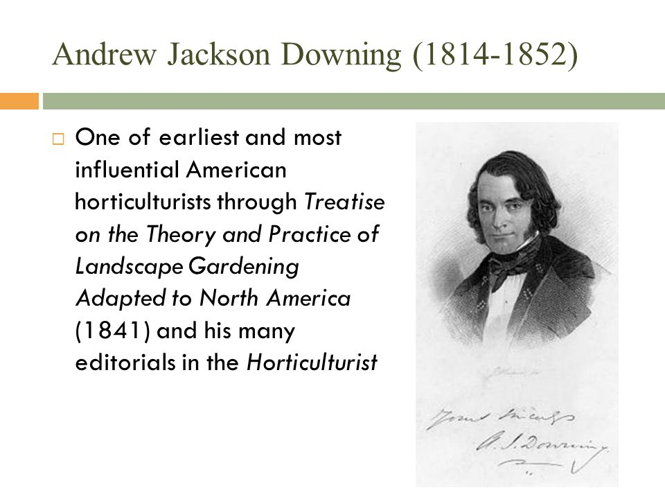 Andrew Jackson Downing (1814-1852)  One of earliest and most influential American horticulturists through Treatise on the Theory and Practice of Landscape Gardening Adapted to North America (1841) and his many editorials in the Horticulturist