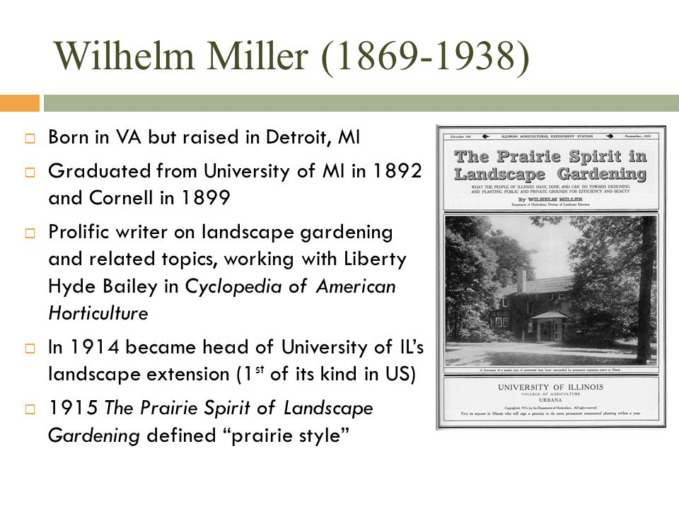 Wilhelm Miller (1869-1938)  Born in VA but raised in Detroit, MI  Graduated from University of MI in 1892 and Cornell in 1899  Prolific writer on l