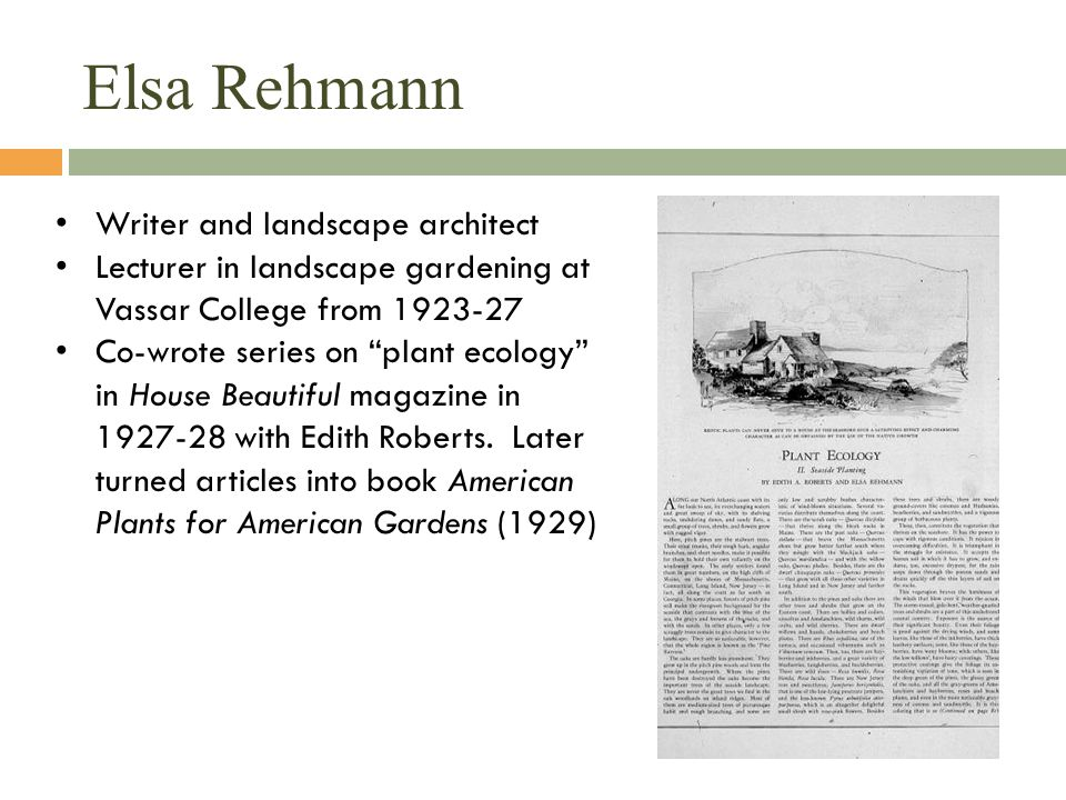Elsa Rehmann Writer and landscape architect Lecturer in landscape gardening at Vassar College from 1923-27 Co-wrote series on plant ecology in House Beautiful magazine in 1927-28 with Edith Roberts.