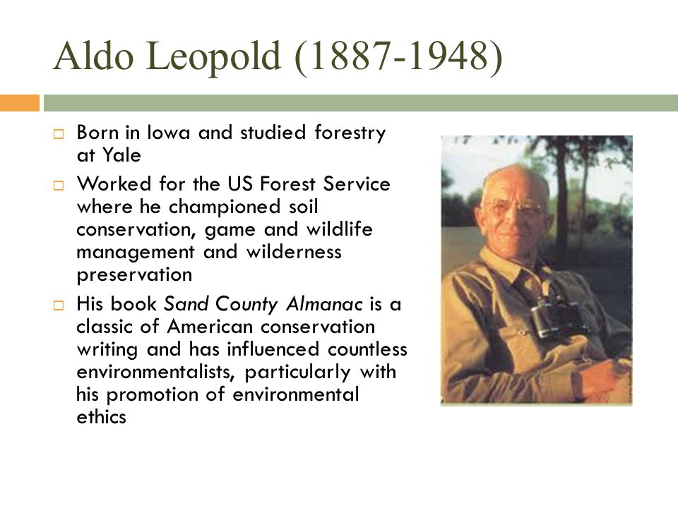 Aldo Leopold (1887-1948)  Born in Iowa and studied forestry at Yale  Worked for the US Forest Service where he championed soil conservation, game an