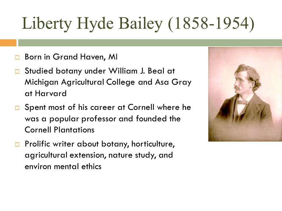 Liberty Hyde Bailey (1858-1954)  Born in Grand Haven, MI  Studied botany under William J. Beal at Michigan Agricultural College and Asa Gray at Harv