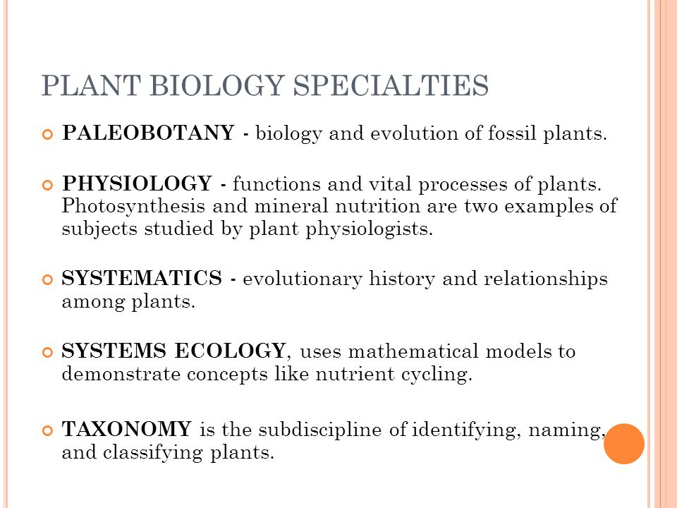 PLANT BIOLOGY SPECIALTIES PALEOBOTANY - biology and evolution of fossil plants.