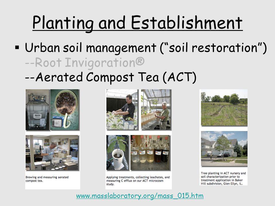 Planting and Establishment  Urban soil management ( soil restoration ) --Root Invigoration® --Aerated Compost Tea (ACT) www.masslaboratory.org/mass_015.htm