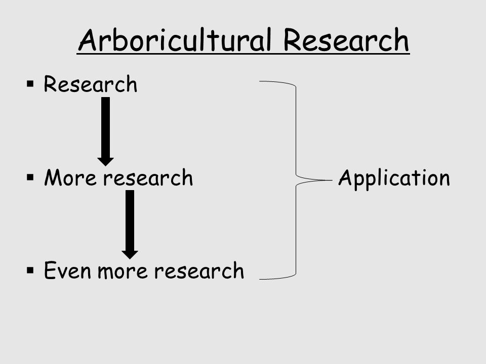 Arboricultural Research  Research  More research  Even more research Application
