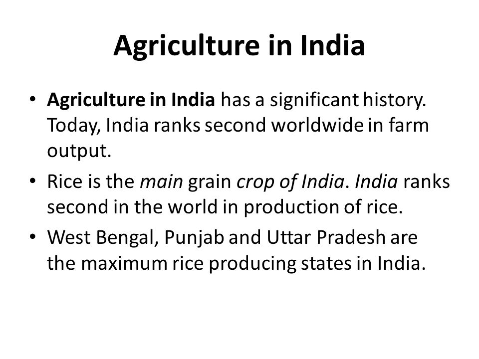 Agriculture in India Agriculture in India has a significant history. Today, India ranks second worldwide in farm output. Rice is the main grain crop o