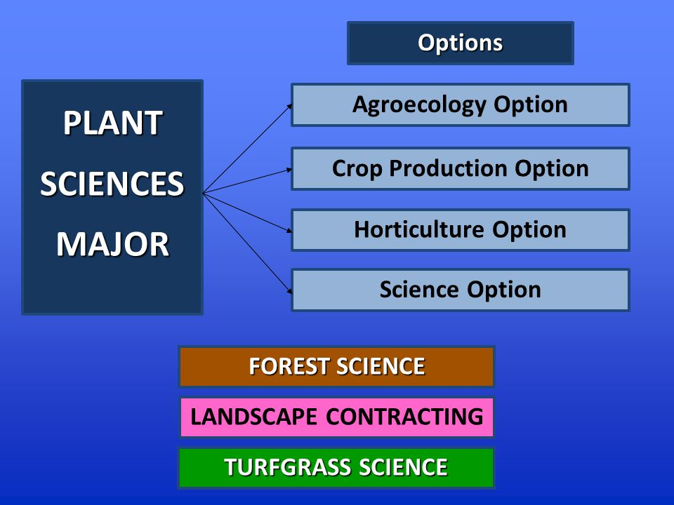 PLANTSCIENCESMAJOR Agroecology Option Horticulture Option Crop Production Option Science Option FOREST SCIENCE TURFGRASS SCIENCE LANDSCAPE CONTRACTING Options